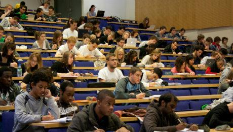 Undergraduate's courses in Economics and Management